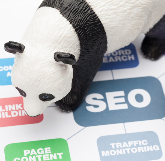 Google Panda Search Update